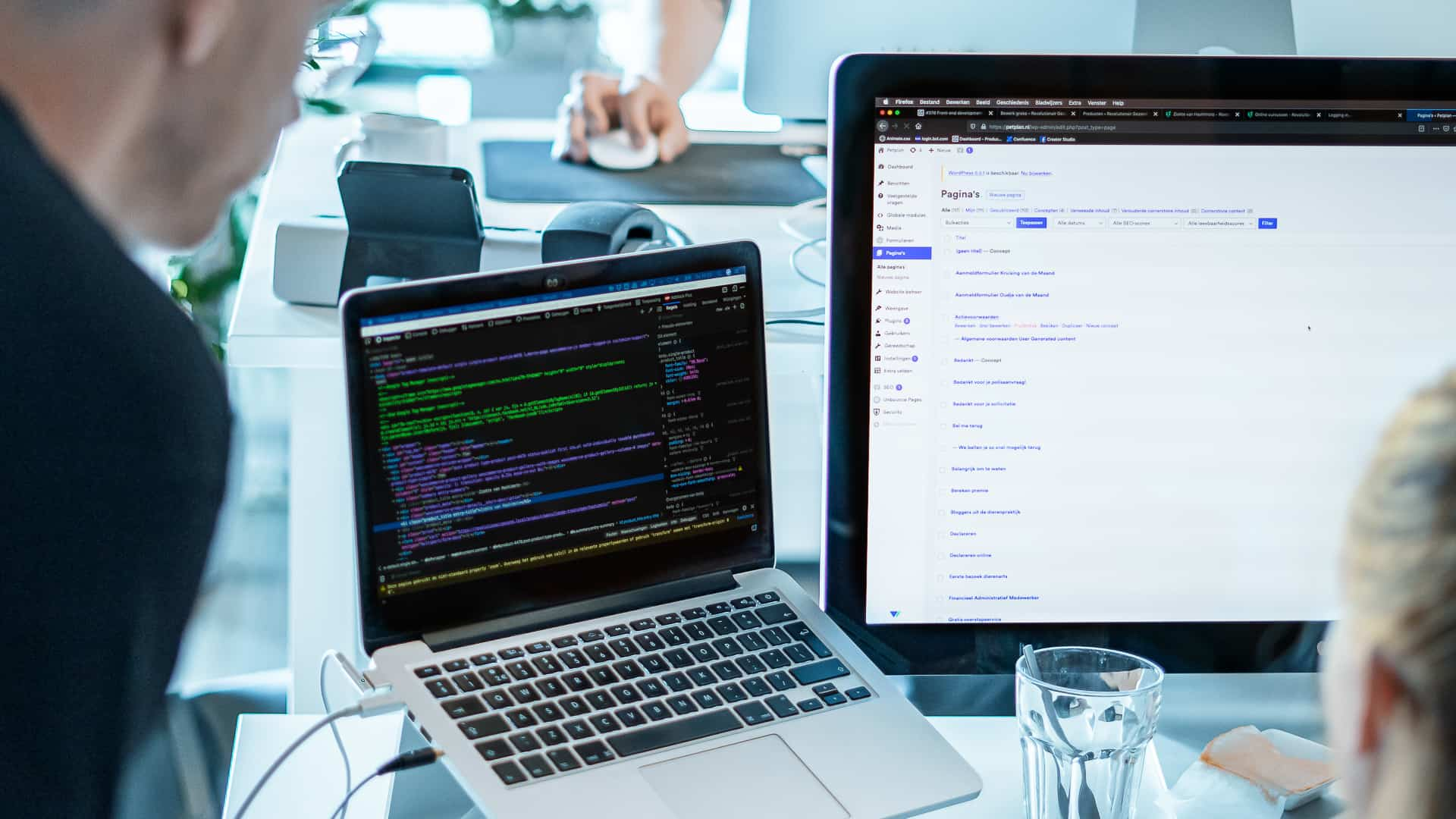 Case - Petplan - WordPress development